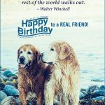 Birthday Wishes For Friend With Name Editor